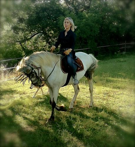 photo,cheval,équitation,encolure,position,pas,cadence,animal,drôme,campagne,nature