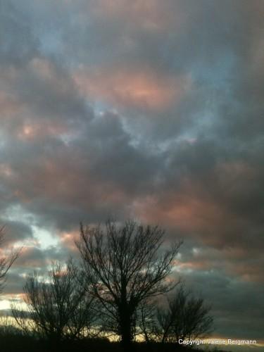 photo, ciel, nuage, couleurs, pastel, rose, bleu