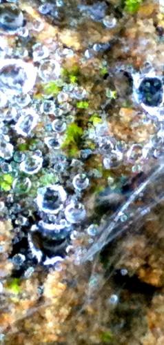 beauté,images,perles,diamant,saphir,art