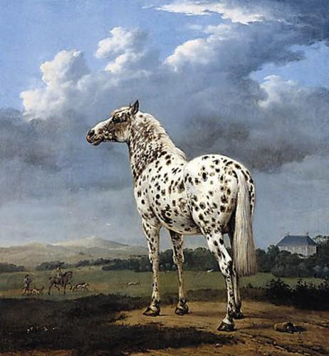 art, peinture, cheval, Rubens, baroque, Belgique, animal,