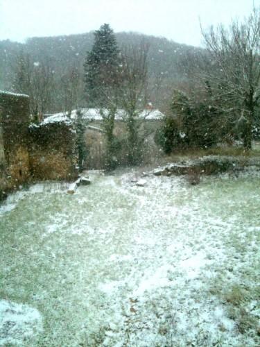 neige, journal, vie, animaux, chien, cheval, sincérité, histoire