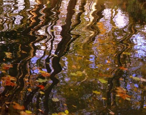 photo, art, paysage,lac, feuillages, nature,reflets, ombres, automne, couleurs, Drôme