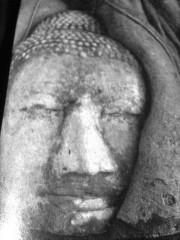 bouddha, sagesse, repos, humilité