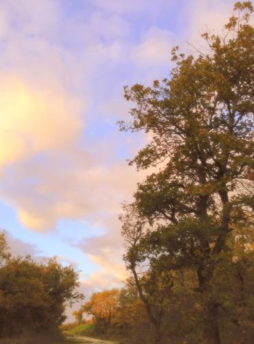 photos,drôme,paysage,saou,coucher,peinture,tableau,soleil,nature,ciel,nuages,chemin,arbres,allées,montagne,rayons,luminosité,couleurs
