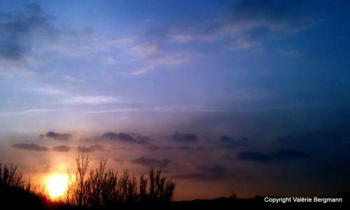 photos, ciel, soleil, couleurs, animaux, bobine, gemini,foin,
