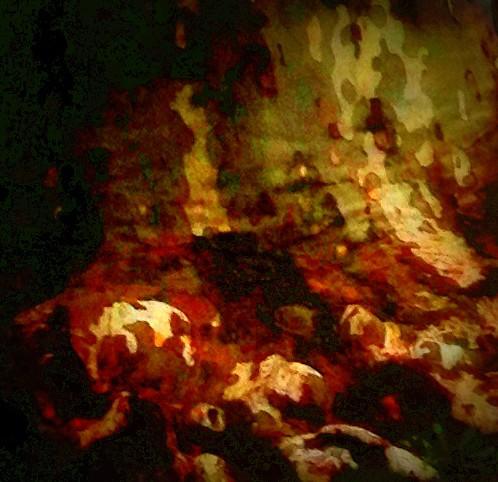 photo, numérique, art, lumières, arbre, tronc, couleurs, image