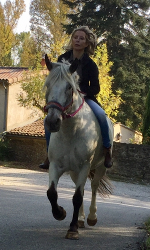 valérie bergmann, cheval, valence, ballade, gemini, bobine, hippos, octobre 2016