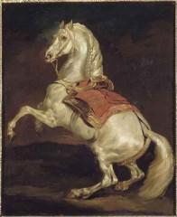 92baf2360c725929-grand-cheval-cabre-dit-tamerlan-gericault-theodore.jpg