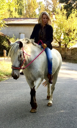 valérie bergmann,cheval,valence,ballade,gemini,bobine,hippos,octobre 2016