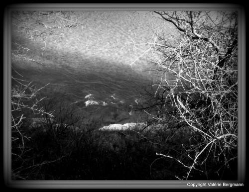 photo,vercors,soleil,paysage,nature,arbres,lumières,montagne