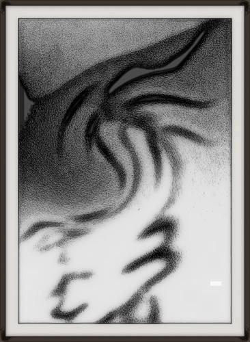 photo, art, noir et blanc, numérique, bambou, ombre, reflet, porte-bonheur 2014