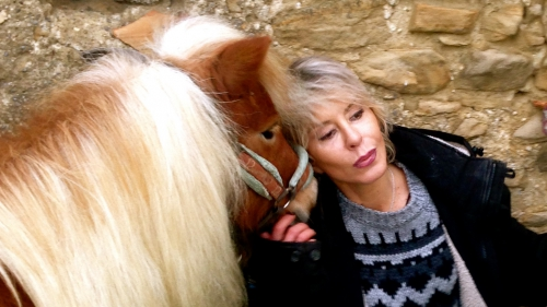 photos,chevaux,amours,appaloosa,shetland,bobine,gemini,drôme,hiver,poses