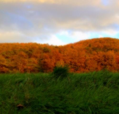 photos, drôme, paysage, nature, coucher, soleil, herbes, couleurs, ciel,chemin, arbres, allées,montagne, rayons, luminosité,