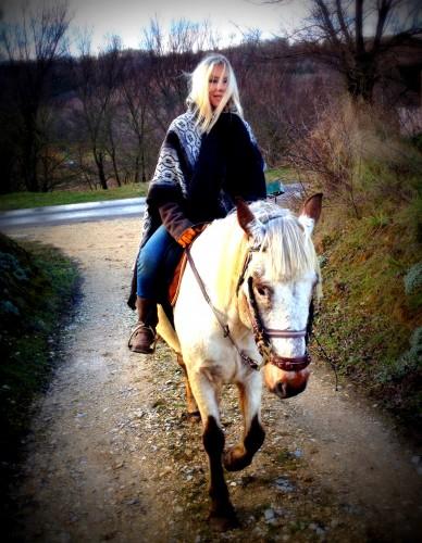 photos,cheval,gemini,ballade,campagne,décor,kristal,chien,drôme