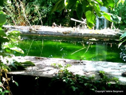 photos, nature, fût, bois, pierre, eau, Les Chanaux, objets,