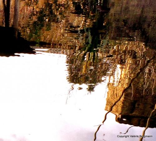 photo, onde, reflet, nature, paysage