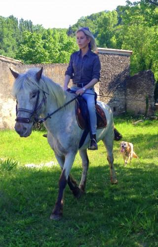 photo,cheval,gemini,campagne,drôme,nature,ballade