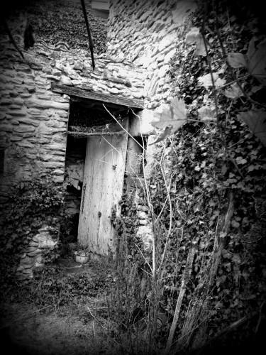 photographies, noir et blanc, vue, passé, porte, ancien, charrette, chaudron, feuille