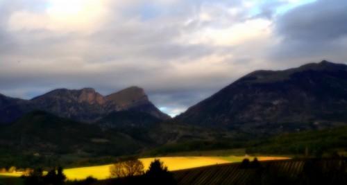 photos,prose,drôme,bourdeaux,tourisme,terre,moutons,troupeaux,faune,flore,paysage,vallon,montagne,prairies,lumière