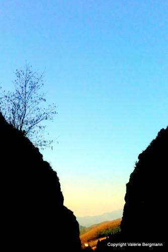 photo, cascade, forêt, nature, paysage