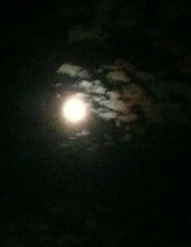 lune, ronde, pleine, nuages, ciel, photo