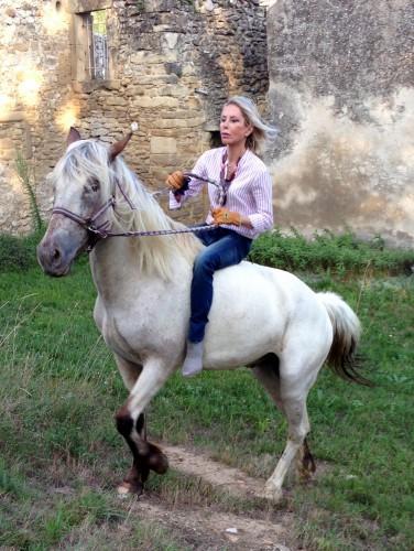 photo, cheval, indienne, équitation, vent, liberté
