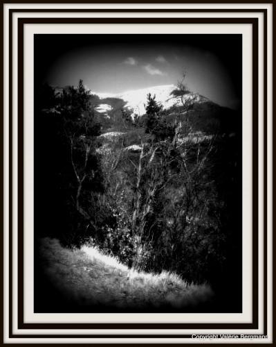 photo,noir et blanc,vercors,ciel,forêt,nature,ciel,paysage