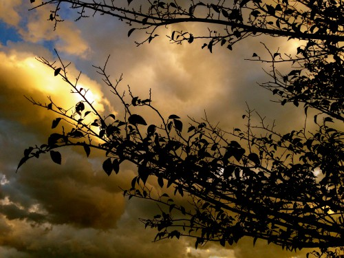 photos,nature,campagne,beautés,lui§re,drôme