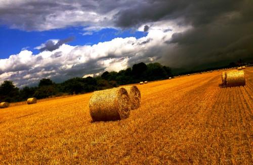 moissons,blés,foin,rouleaux,céréales,nature,champ,paille,campagne,couleurs,ciel,nuages,drôme