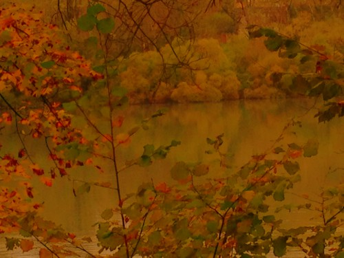 photo, art, couleurs, automne, saison,drôme, Romans, lac, paysage, nature, ballade