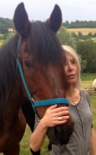 hommage,cheval,cache cage,décès,chagrin,vie