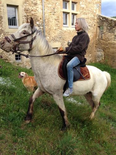 photos, souvenir, animaux, Drôme, nature, équiation, cheval, chien, ponette, gemini, bobine