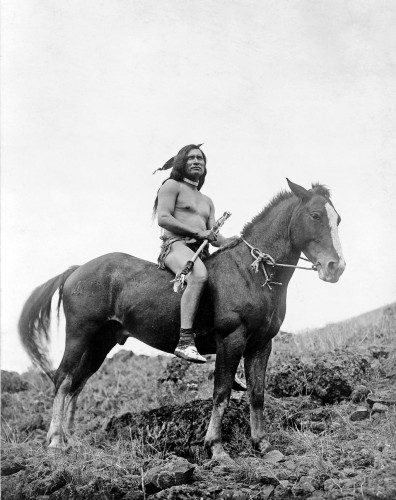 indien, nez percés, photo, guerrier, cheval appaloosa, amérique, ouest