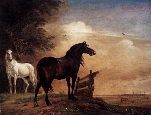art, cheval, Potter, peinture, animalier, âge d'or, flamande
