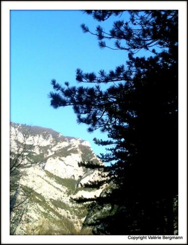 photo, couleurs, ciel, saou, forêt, drome,arbres