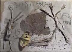 composition au papillon Picasso.jpg