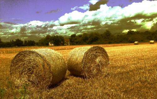 moissons, blés, foin, rouleaux, nature, champ, paille , campagne, couleurs, ciel, nuages, Drôme