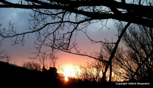 photo,soleil,coucher,vue,ciel,neige