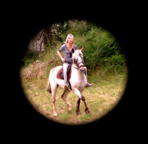 photos, cheval, gemini, drôme, équitation, trot,les chanaux, campagne, nature