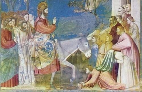 art,Giotto, rameaux, dimanche, chrétien, juif, fête, olivier