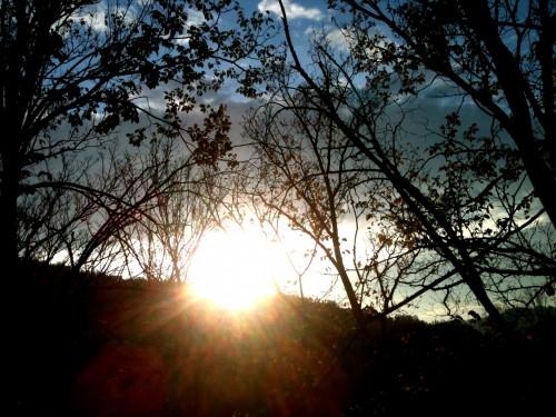 ciel, soleil, nature, paysage, coucher, pastels, tons