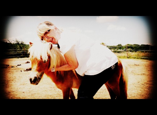 photo, souvenir, les chanaux, poney, bobine