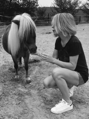 Photos, valeriebergmannn, Drôme, septembre 2016, chevaux, amour, nature, gemini, bobine