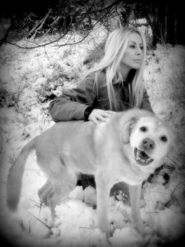 photo,neige,froid,chienne,animaux,campagne,chevaux,kristal,gemini,bobine,souvenir,drôme